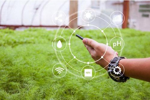 مشاوره و فروش محصولات هوشمند سازی گلخانه