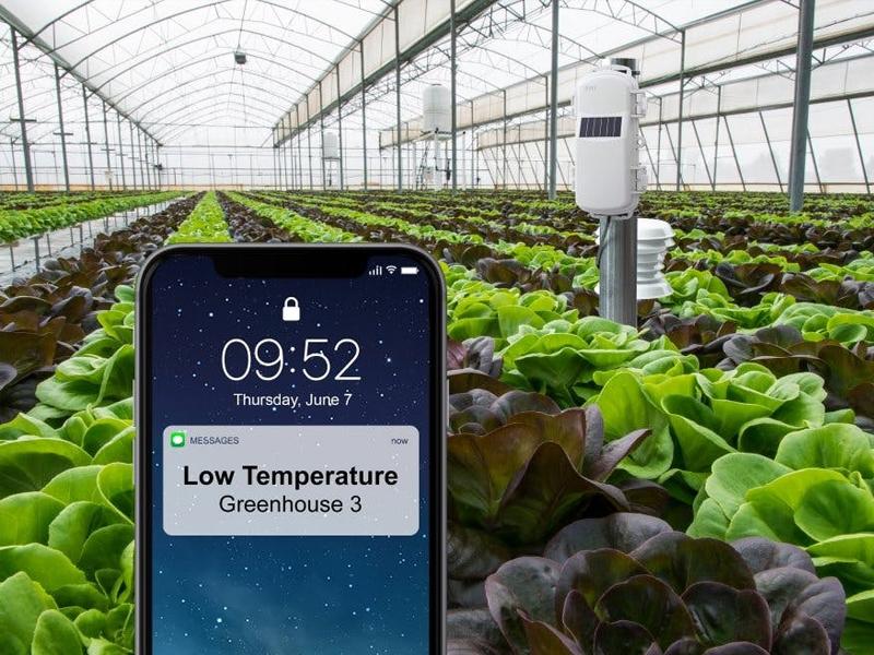 سیستم هوشمند کنترل دمای گلخانه